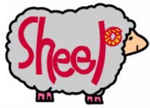 幼儿英语单词图片; 幼儿英语单词图片:绵羊;