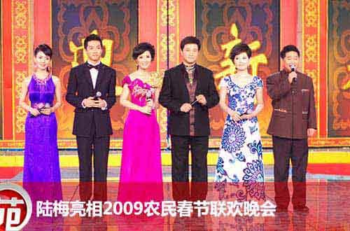 2009春节联欢晚会_[组图]陆梅亮相2009年农民春节联欢晚会