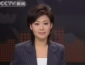 cctv13新闻主持人郑丽 cctv女主持人郑丽照片 cctv综合新闻-央视13套