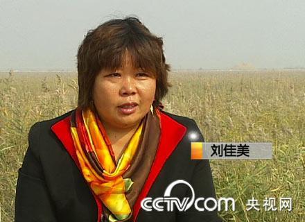 刘佳美这才发现,虽然这里是黄河入海口,离黄河最近的地方不过200米,水图片