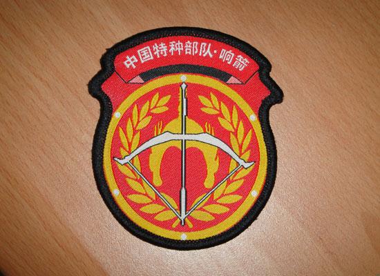 中国特战队队徽_特警照片特战队照片_雪狼特战队 ...