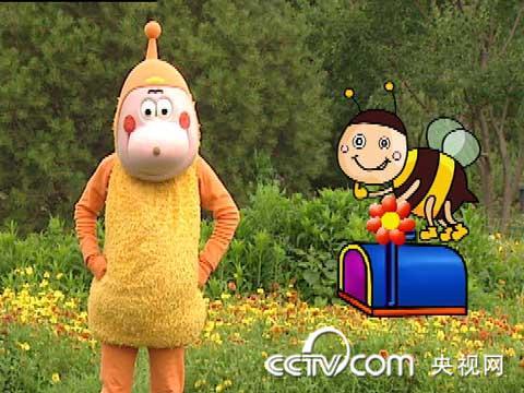 小小智慧树 cctv.com